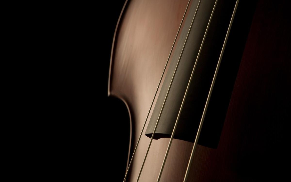 cello-artistic-wallpaper-1920x1200-1373